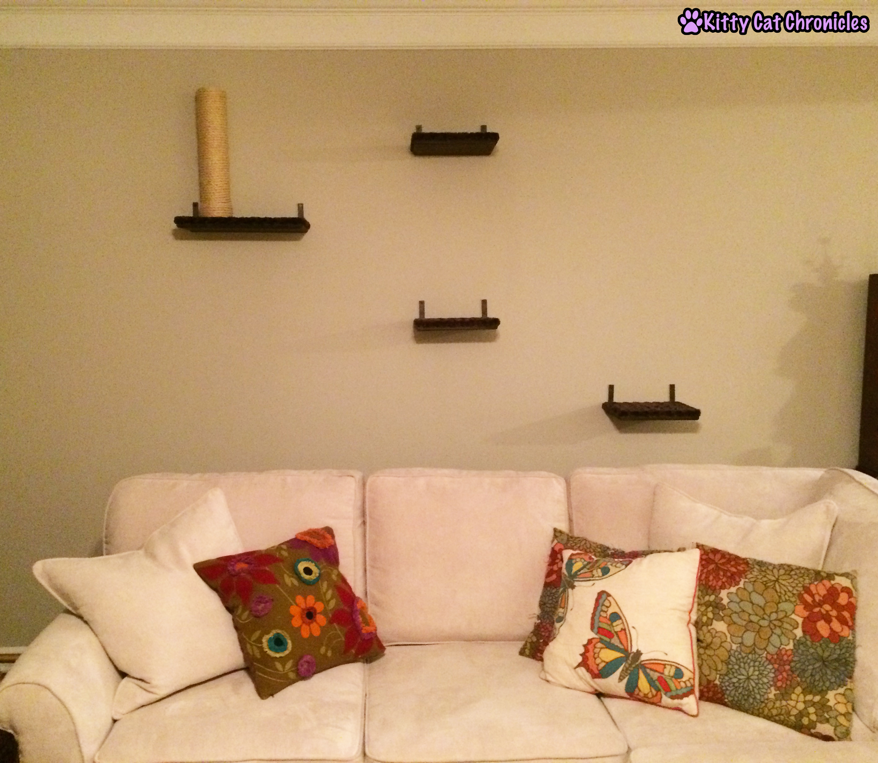 Cat Shelves - Catification