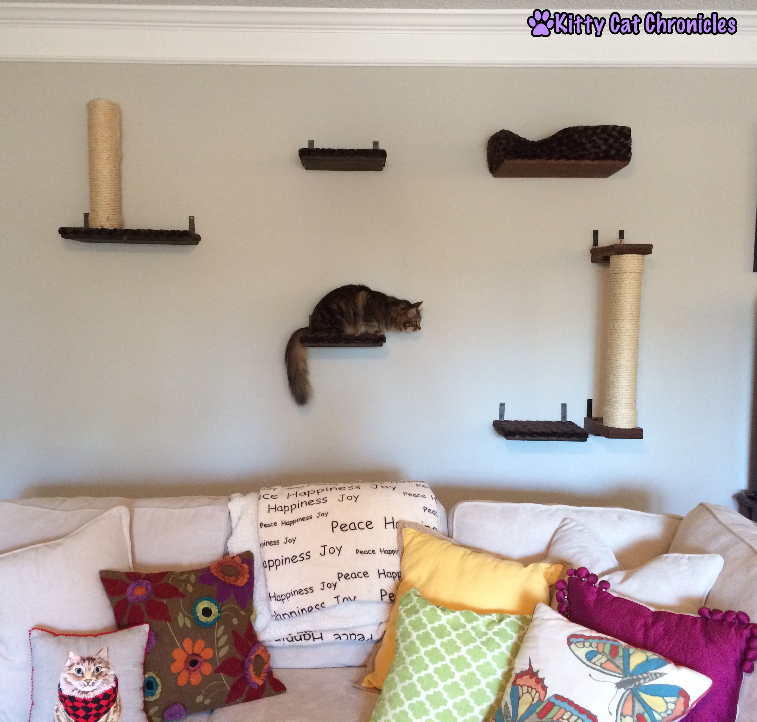 Cat shelves for wall gallery home wall decoration ideas cat wall archives kitty cat chronicles cat wall additions watching my kitty cat gang run play amipublicfo Image collections