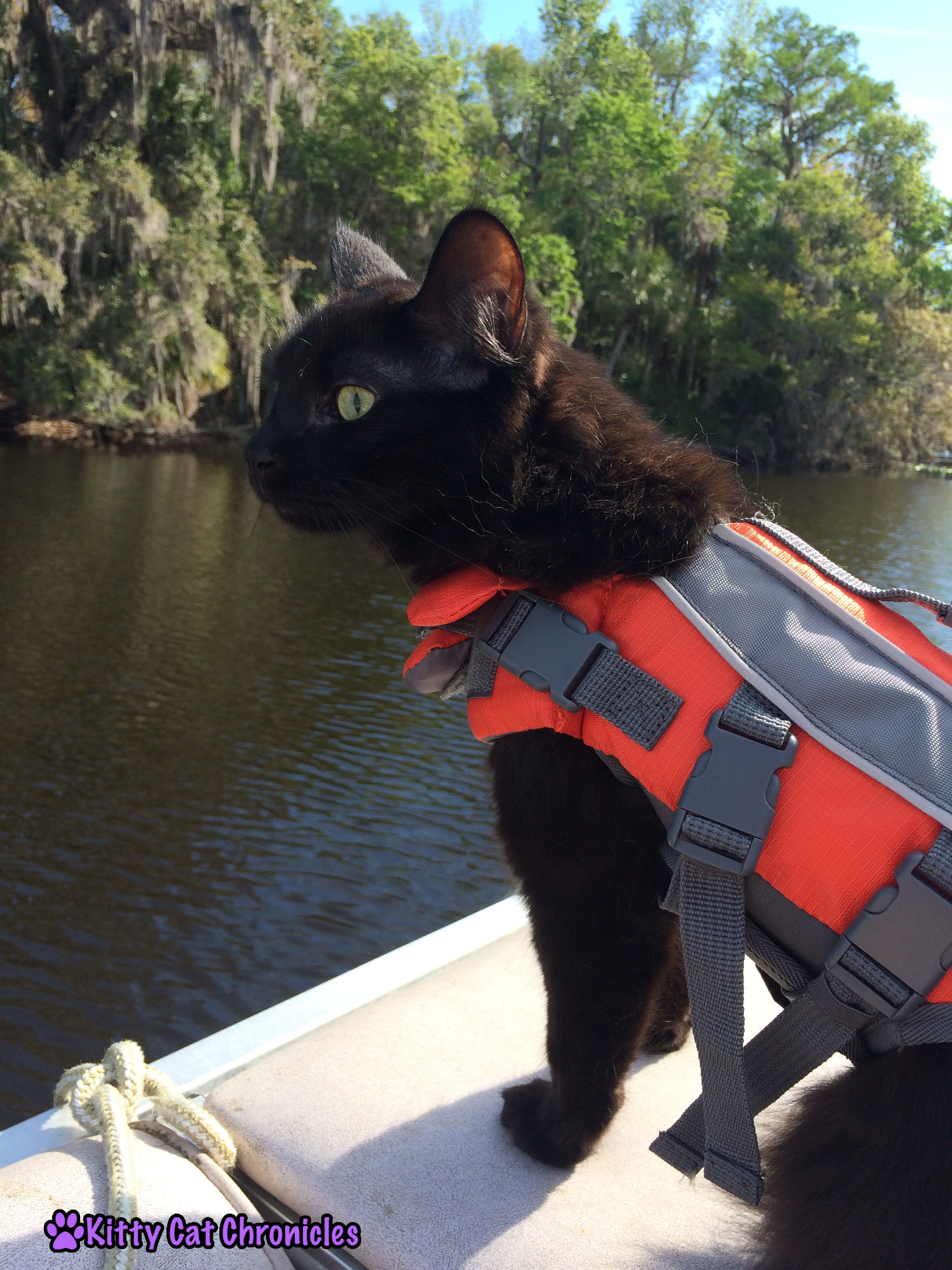 Wordless Wednesday: Welaka, Kylo Ren on a Boat