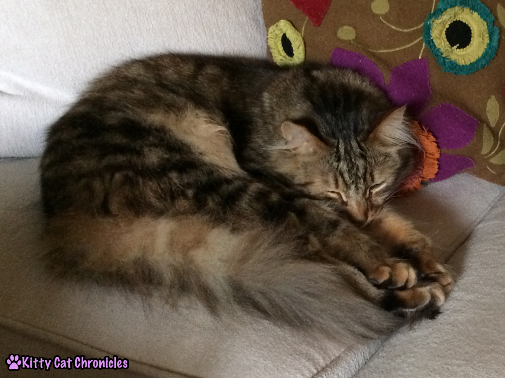 Not Laboring on Labor Day - Caster